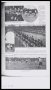 Image of : Article - Everton F.C. v. Tottenham Hotspur F.C. in Argentina, 1909