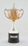 Image of : Trophy Havre Athletic Junior International