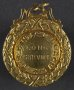 Image of : Medal - The Central League, Long Service