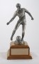Image of : Tim Parry Memorial Trophy. Merseyside Co. Schools Cup Final.