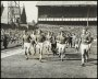 Image of : Photograph - Everton F.C. team after winning the League Championship