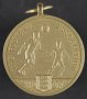 Image of : Medal - F.A. Cup Runners-Up, 1985