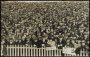 Image of : Postcard - Crowd scene, Cup Tie, Brighton v Everton, Hove 1913